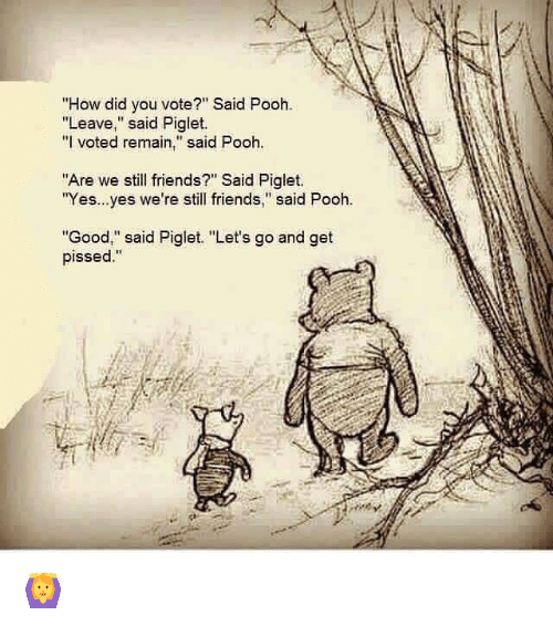 how-did-you-vote-said-pooh-leave-said-piglet-i-2915124